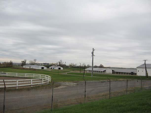 Kentucky, Ohio & Indiana Memories - Page 4 HburgShowgrounds2