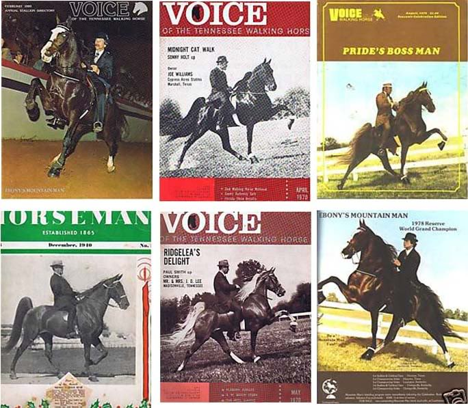 The BEST of Walking Horse Trivia! - Page 4 MagazineCollage