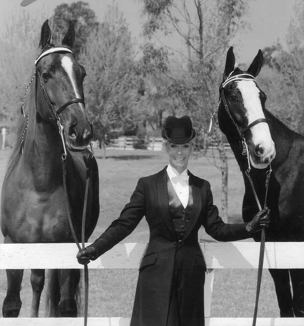 The BEST of Walking Horse Trivia! SusanGordon