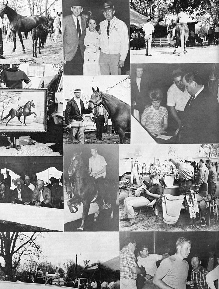 Trivia Archive 8 - Page 2 1968MurrayFarmSale