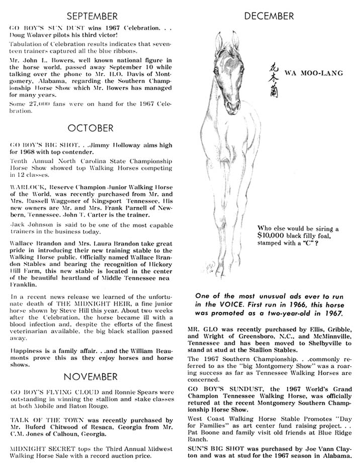 History Of The Tennessee Walking Horse - Page 3 DIR25