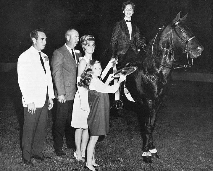 The BEST of Walking Horse Trivia! - Page 26 GoBoysRoyalHeirCandaceWilliams3