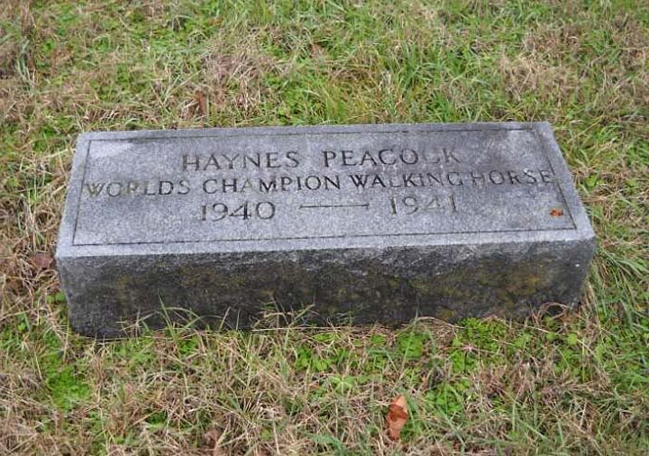 History Of The Tennessee Walking Horse - Page 3 HaynesPeacockGraveMarker