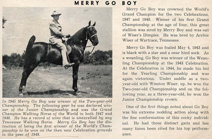 History Of The Tennessee Walking Horse - Page 3 MerryGoBoy