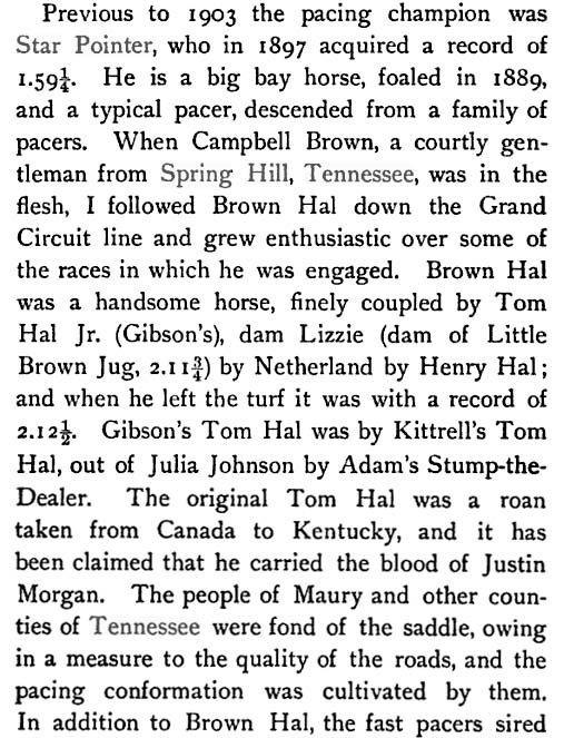 History Of The Tennessee Walking Horse - Page 7 MiddleTnPacers1