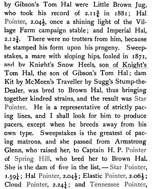 History Of The Tennessee Walking Horse - Page 7 MiddleTnPacers2