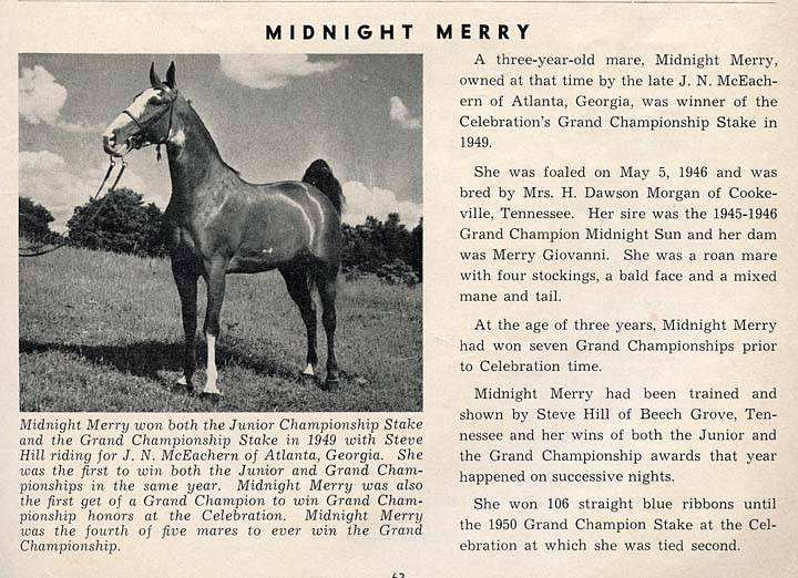 History Of The Tennessee Walking Horse - Page 4 MidnightMerry