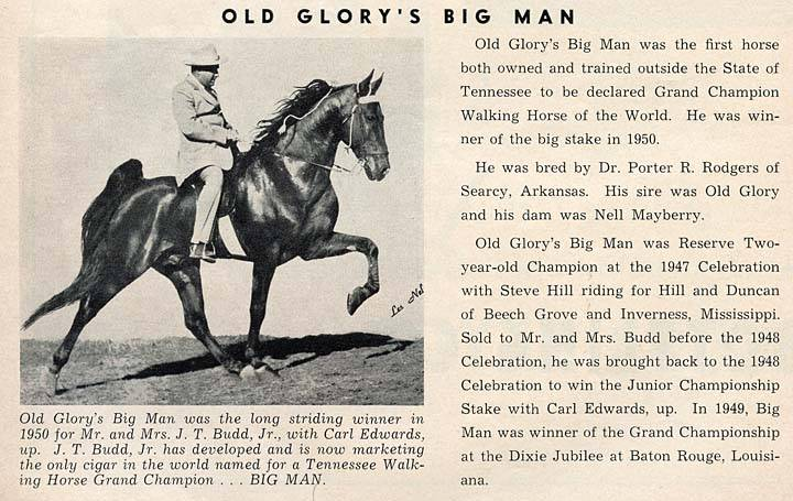 History Of The Tennessee Walking Horse - Page 4 OldGlorysBigMancopy
