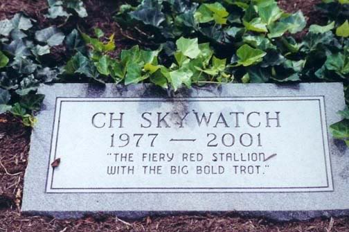 History Of The Tennessee Walking Horse - Page 2 SkywatchGrave