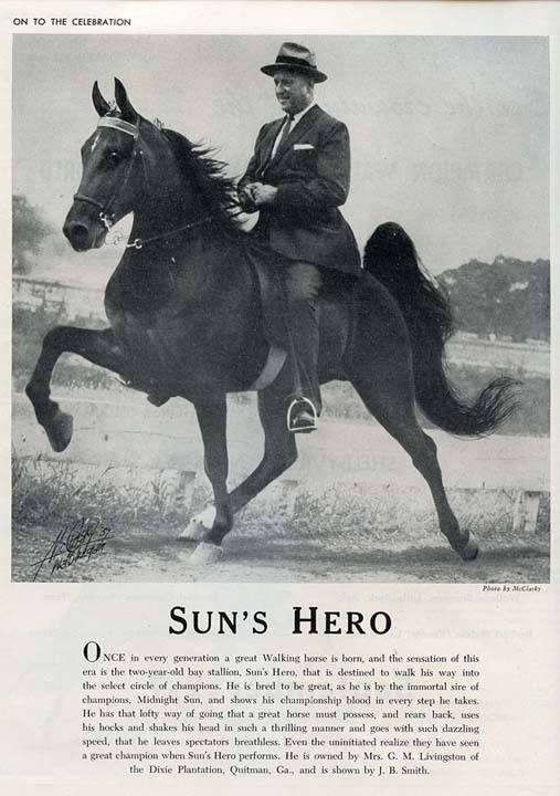 The BEST of Walking Horse Trivia! - Page 26 SunsHeroAd