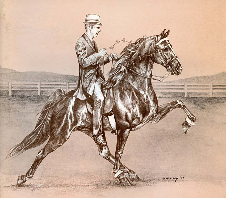 Equine Art TheHighChapparalDrawing-1