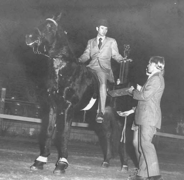 The BEST of Walking Horse Trivia! - Page 5 Acesblackbarondudecrowder