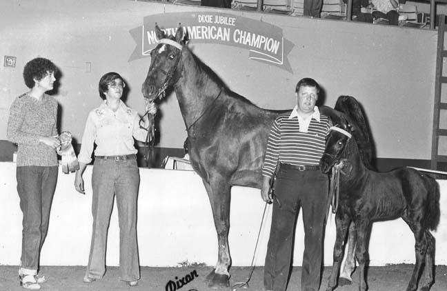 The BEST of Walking Horse Trivia! - Page 5 Bmajorsannie-shadesmissamerica