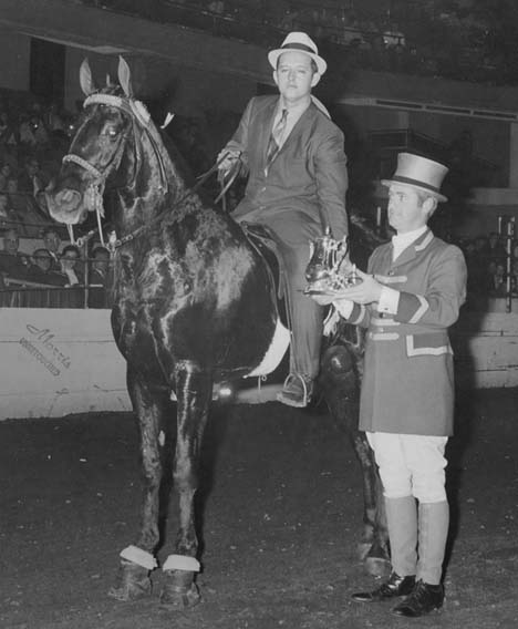 The BEST of Walking Horse Trivia! - Page 5 Delightssocietysun-howardroberts