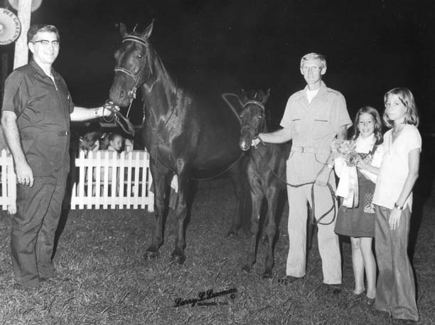 The BEST of Walking Horse Trivia! - Page 5 Goboyslaralee-ebonysdebonaire