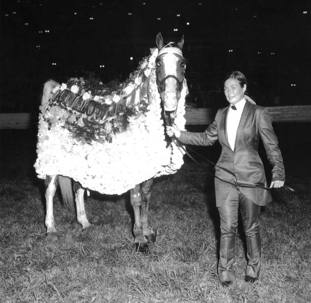 The BEST of Walking Horse Trivia! Moonglowjr