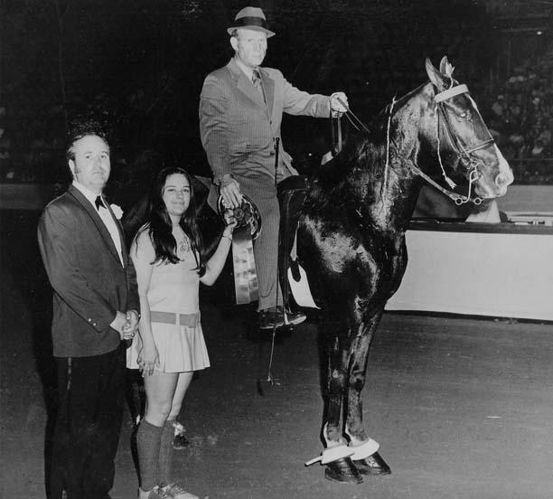 The BEST of Walking Horse Trivia! - Page 5 Shadowsmissebony
