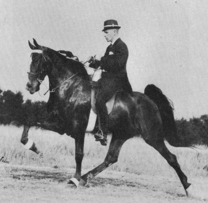 The BEST of Walking Horse Trivia! - Page 25 Who3-6