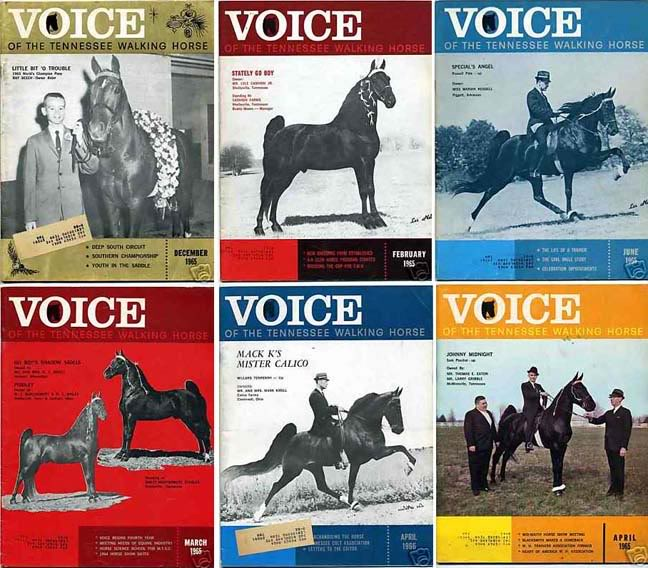The BEST of Walking Horse Trivia! - Page 4 VoiceMagazineCovers
