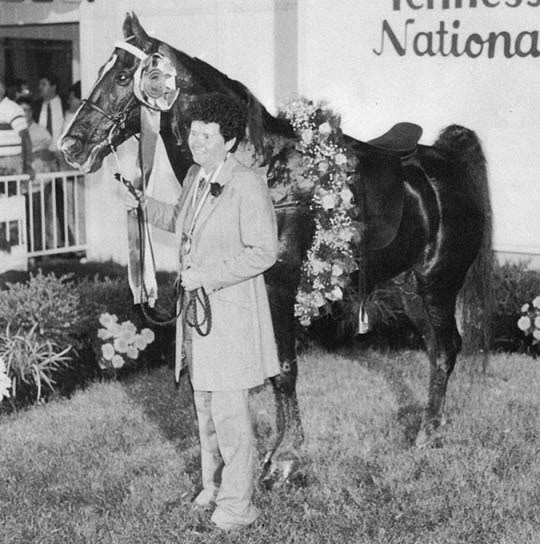 The BEST of Walking Horse Trivia! Flashypride-1