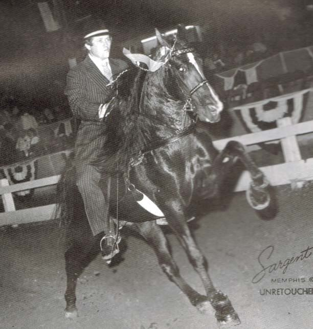 The BEST of Walking Horse Trivia! - Page 4 Prideshurricane