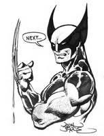 La folie viviane. - Page 6 Wolverine_sketch