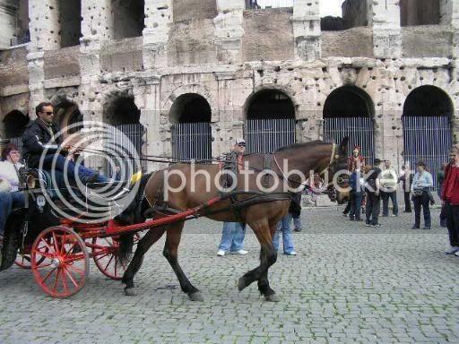 Rim-foto galerija Rim54a