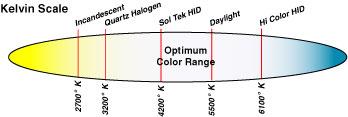 Luz Xénon - Página 6 Kelvin-Scale