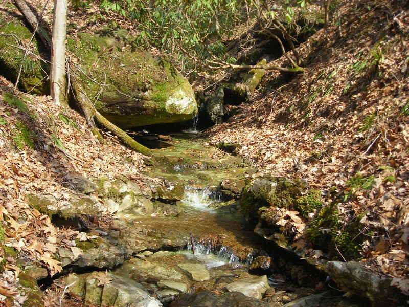 Some pics from the Red River Gorge... Randompics48718