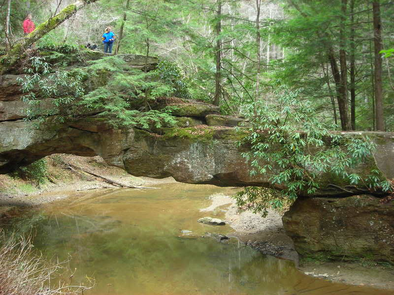 Some pics from the Red River Gorge... Wedding130