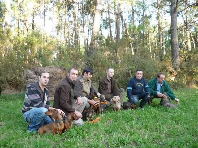 Encuentro con perros en Luarca P1030067