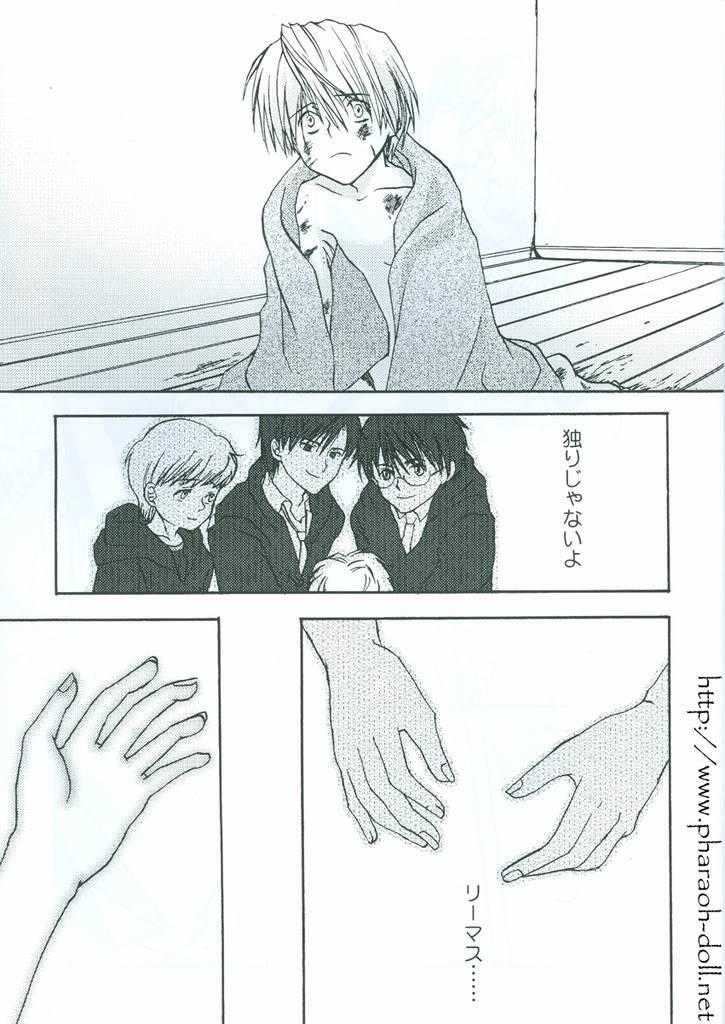 Galeria Page11