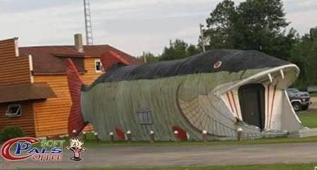 صور بيوت غريبة Odd_houses15