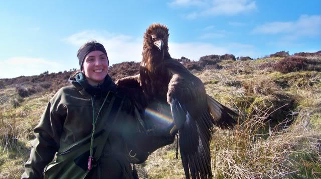 Comparação do tamanho de águias  com relação ao homem. Laurenelson