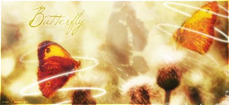 » Galerie du Paillasson « Butterflyformecopie
