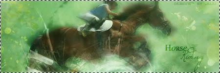 » Gallerie Sea.of.Tears Horseridingcadrecopie-2