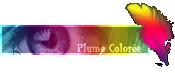 Plume Colorée