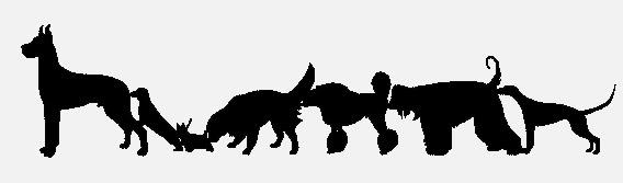 FARRAZINE # 17 Dogsgray
