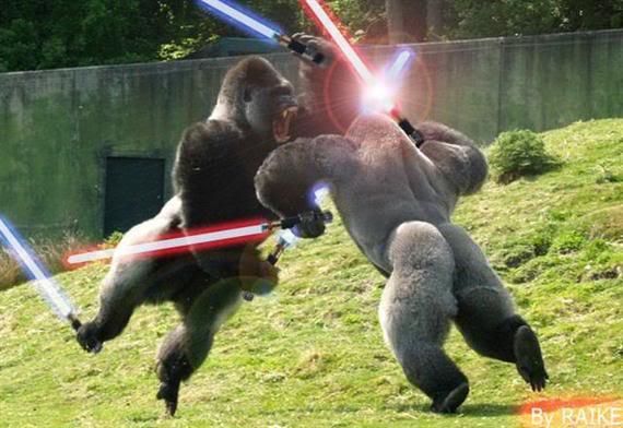 WHEN GORILLAZ ATTACK - Page 9 Star-Wars-Fighting-Jedi-Gorillas-Funny