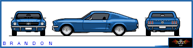 Võistlusautode reeglid Mustangold4