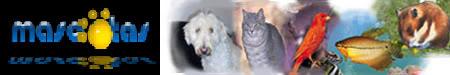 Registro de Mascotas Mascotas