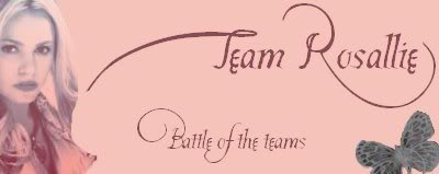 Team Mike Banners BattleoftheTeams08_rose