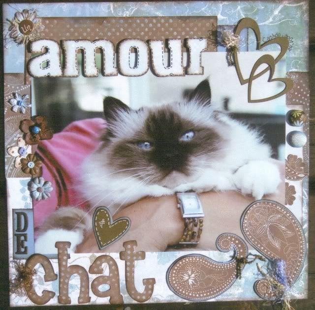 5 fév. ..un amour de chat Cashouamourdechat
