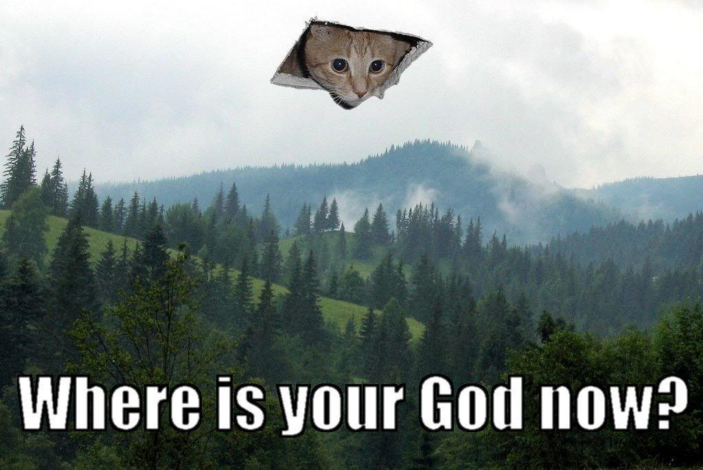Pazzi come gatti Where-is-your-god-now