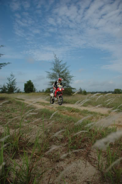 Cool XR650R Pix! DSC-0049