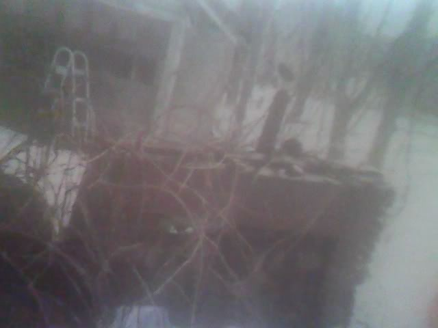 More old photography of mine taken with a disposable camera Picture118
