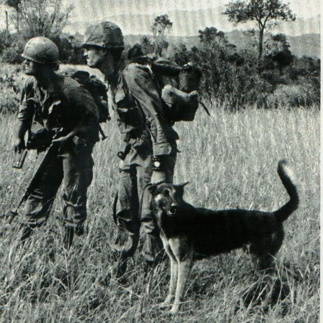 Ficha Técnica: 173rd Airbone Brigade 173_4
