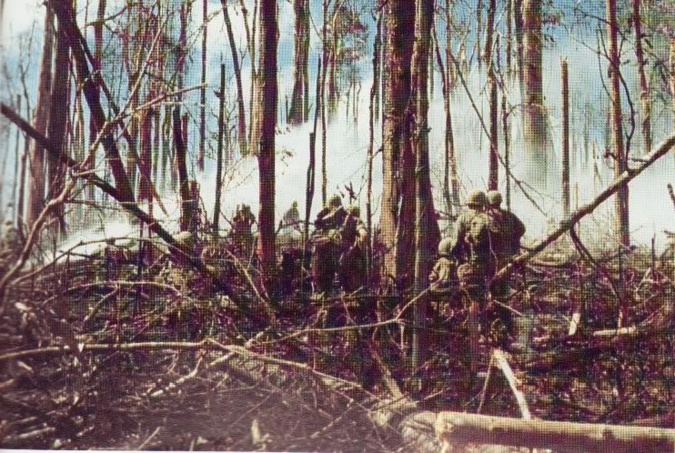 Ficha Técnica: 173rd Airbone Brigade 173_darkto