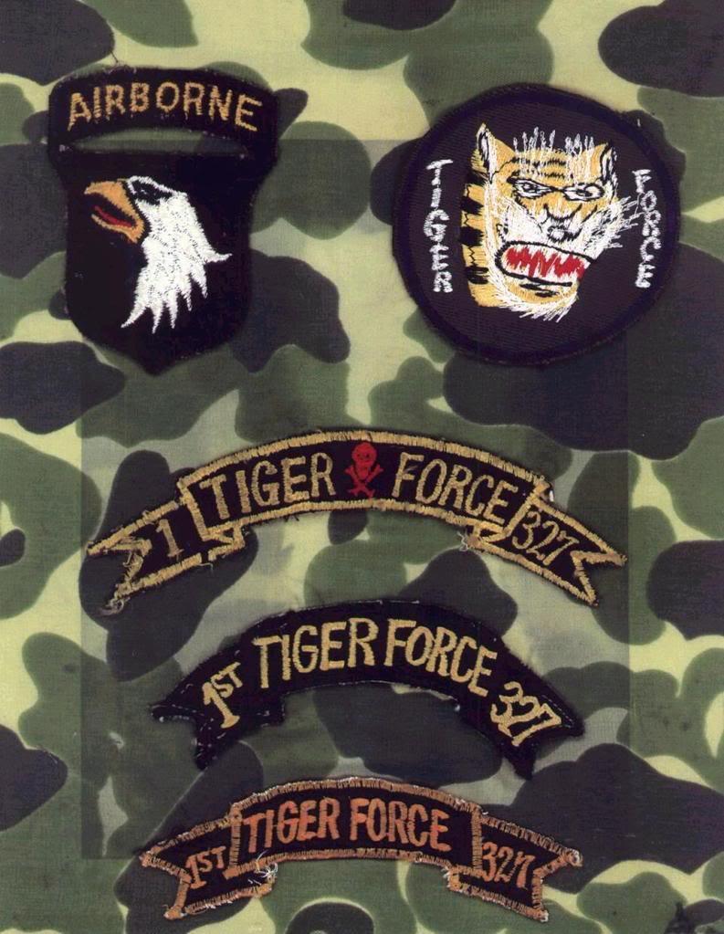Tiger Force Tiger1