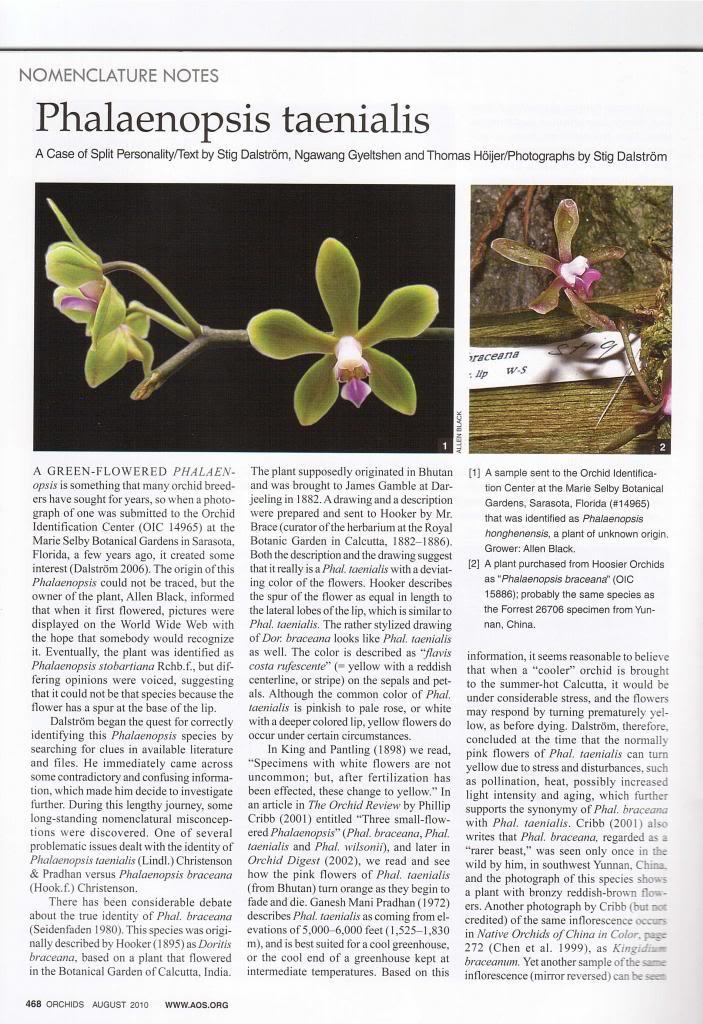 Discussion autour de Phalaenopsis stobartiana, braceana, taenialis et honghenensis Orchids_79_8_2010_468_zps53102168
